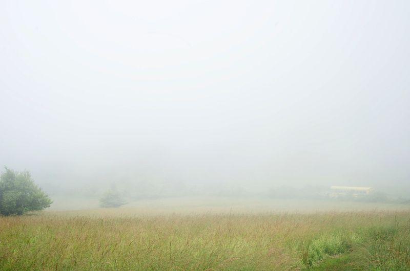 Field Camp_090616_ 0005
